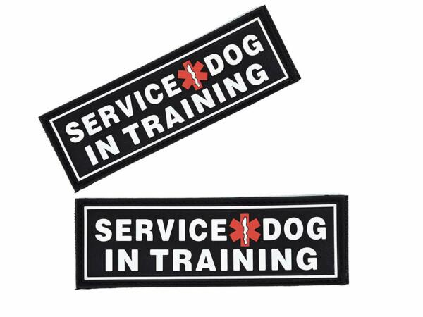 SERVICE DOG IN TRAINING 3D Rubber PVC Patch Label Tag For Harness Collar Vest $12.00