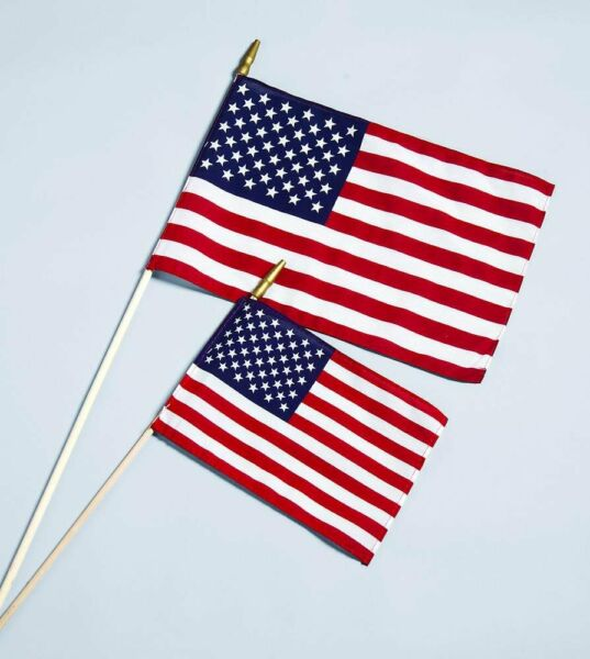 Allied Flag Cotton US Stick Hemmed Flag 4 Inch by 6 Inch from Little Folks