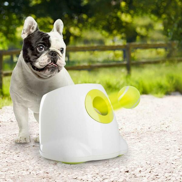 All for Paws Interactive Automatic Dog Ball Launcher Dog Ball Throwing Toy Incl