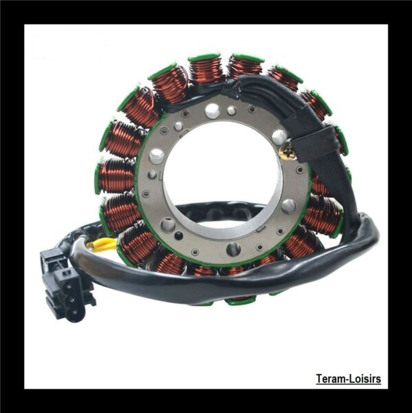 Stator Alternator for BMW F800 GS 800 F from 2009 2010 2011 2012 2013 2014 New