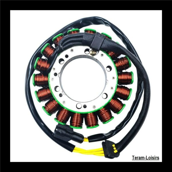 Stator Alternator for BMW F800 Gt 800 F from 2013 to 2014 New