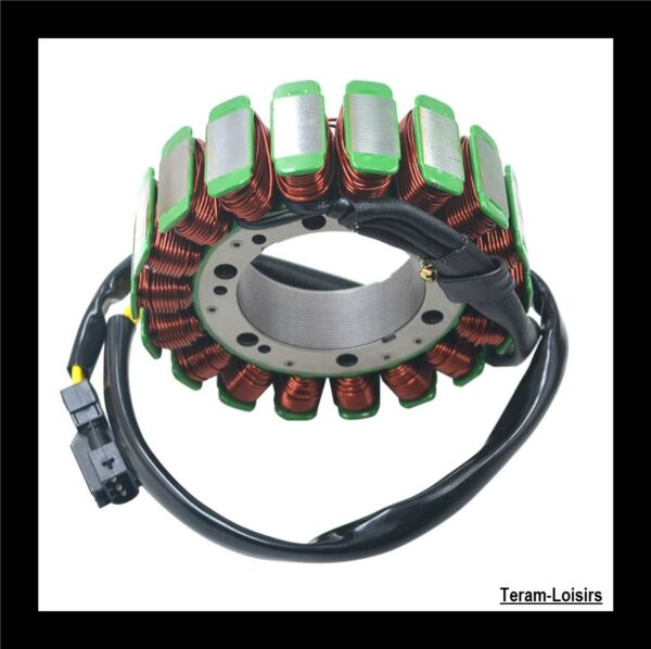 Stator Alternator for BMW F800 GS 800 F from 2009 2010 2011 2012 2013 2014) New