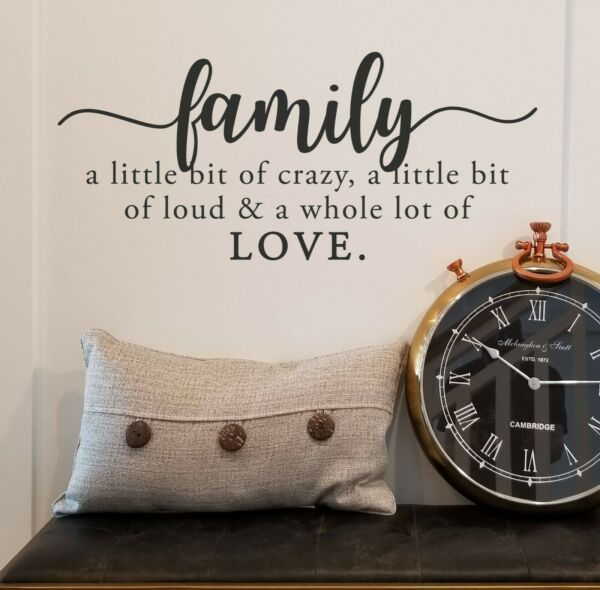 FAMILY CRAZY LOUD LOVE Vinyl Wall Decal Quote Sticker Decor Words Lettering Sign $12.50