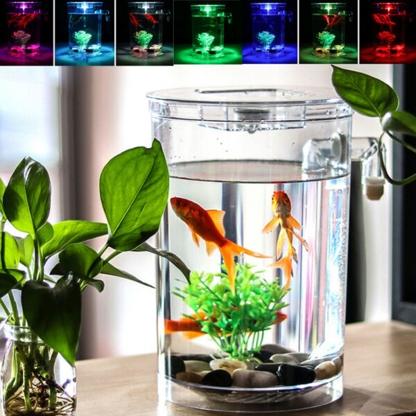 Creative Ecology Mini LED Fish Tank Luminous Glass Tank Aquarium Fish Tank $22.99