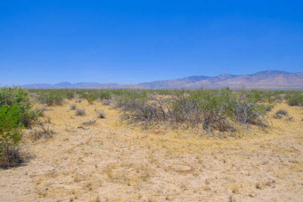Southern California Desert Retreat 2.6 Acres - 2 Hrs from LA  - NO Reserve!!