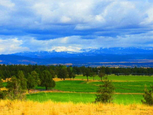 BUILD-ABLE Residential Property MODOC COUNTY
