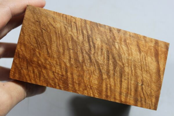 #3252 5A Quilted Maple Wood PenSmall Project Turning Blank 5.3