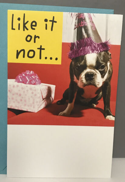 Funny Humorous Birthday Greeting Card Boston Terrier Dog Like It Or Not $4.25