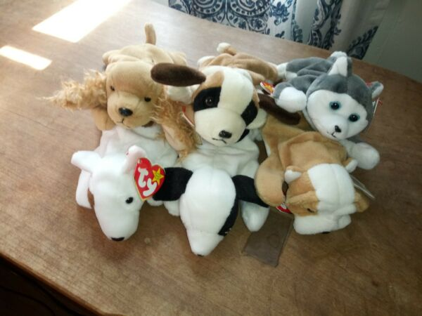 Beanie Babies Set Of 6 Unique Dogs With Tags $20.00