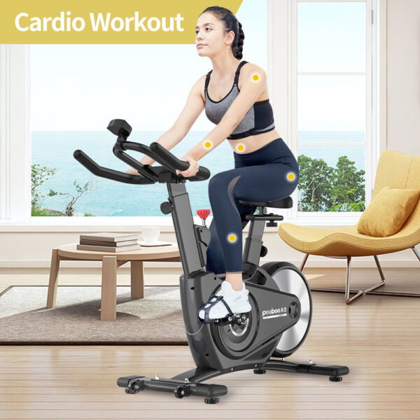 Indoor Exercise Bike Magnetic Resistance Cardio Cycling Machine Stationary Bike $223.21