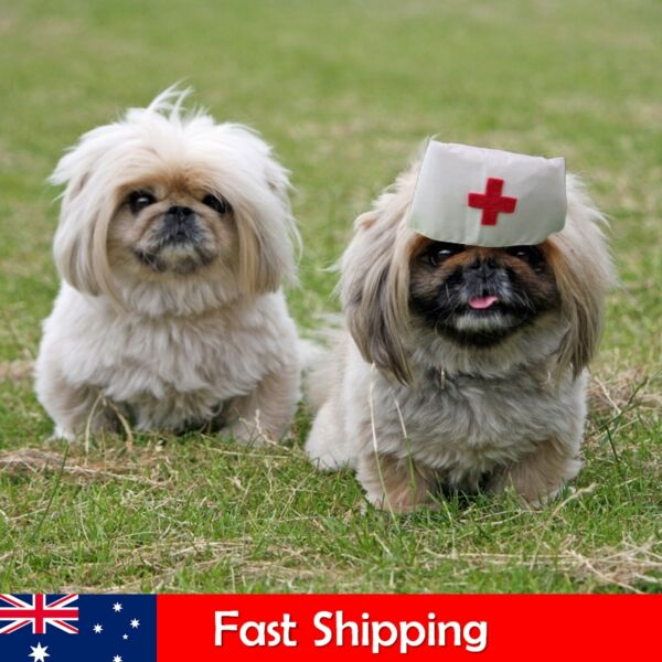 Pet Outfit Nurse Hat Costumes for Small Dogs Dog Outfit Dog Hat AU $9.50