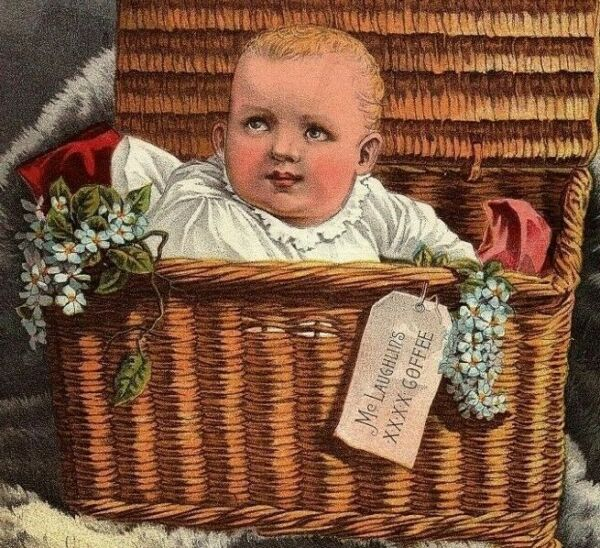 Coffee Trade Card Victorian McLaughlin#x27;s Precious Freight Baby In A Basket