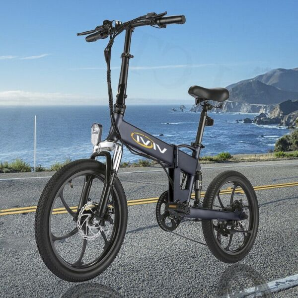 20InCh Electric Bike Mountain Bicycle EBike 21Speed 350W Removeable Battery Hot} $669.99