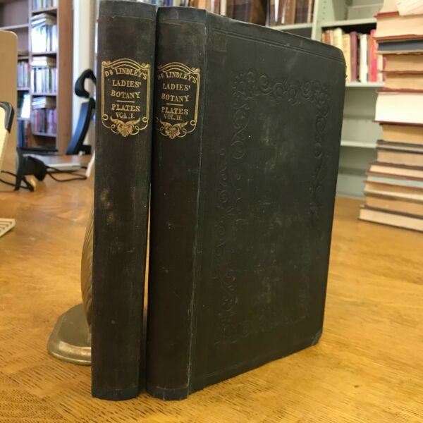 1862 Ladies' Botany: or A Familiar Introduction to Natural System of Botany $250.00