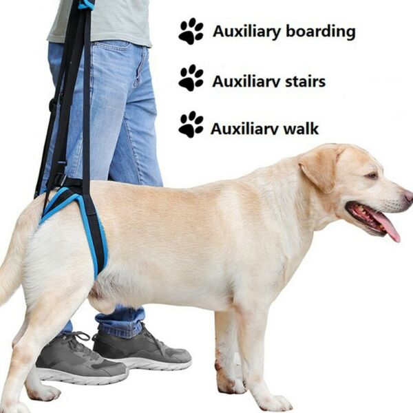 Pet Aid Lifting Support Harness Canine Lift Injured Paralyzed Dog Back Leg $13.12