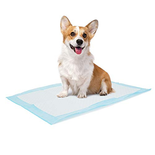 """Bolux Dog and Puppy Training Pads Disposable Dog Pee Pads 13""""×18"""" 100 Count $27.10"""