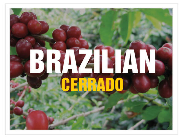 Up To 100 lbs Brazil Cerrado Arabica - natural 1718 screen Green Coffee Beans