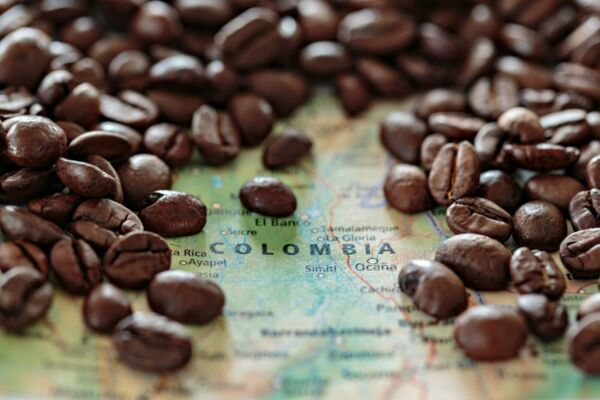Up to 15 lbs Colombian Medellin Supremo Coffee Beans 17 18 Always Fresh Beans