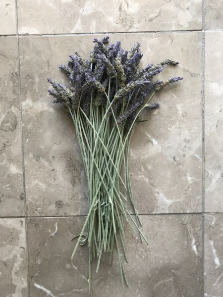 12in Long Stem Organic USA Natural Air Dried California Lavender Flower Bunches $6.75