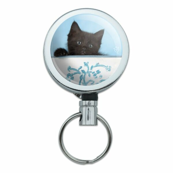 Black Kitten Cat in Bucket Tin Pail Retractable Belt Clip Badge Key Holder
