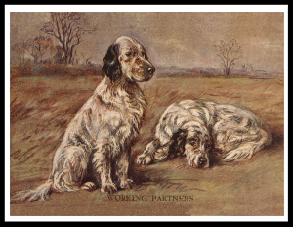 ENGLISH SETTER TWO DOGS WORKING PARTNERS LOVELY VINTAGE STYLE DOG PRINT POSTER