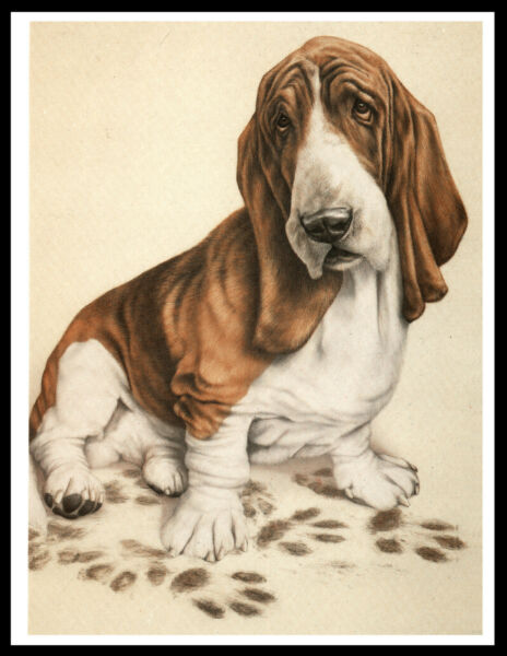BASSET HOUND LEAVES MUDDY PAW PRINTS  LOVELY VINTAGE STYLE DOG ART PRINT POSTER