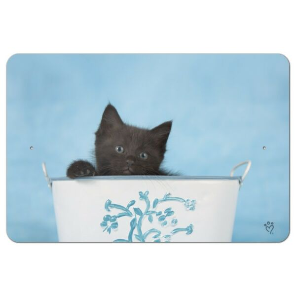 Black Kitten Cat in Bucket Tin Pail Home Business Office Sign