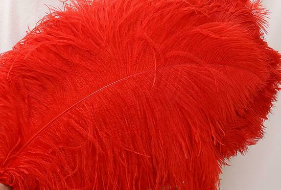 50pcs 25-29 inches Ostrich Feathers Ostrich Plumes Male Ostrich Feathers