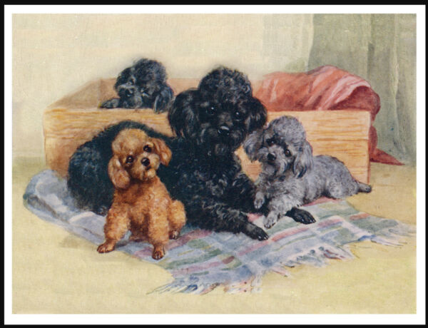 POODLE AND PUPPIES LOVELY VINTAGE STYLE DOG ART PRINT POSTER