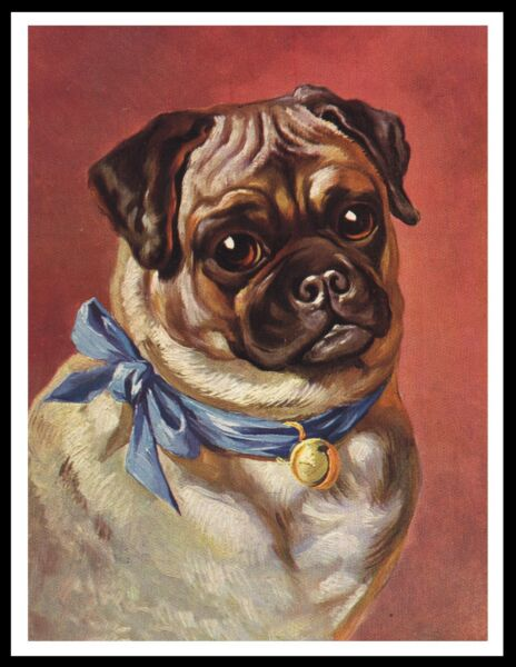 PUG LOVELY HEAD STUDY VINTAGE STYLE DOG ART PRINT POSTER