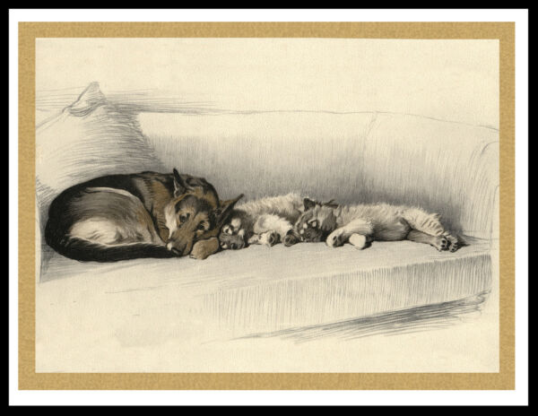 GERMAN SHEPHERD AND KEESHOND PUPS SLEEPING LOVELY VINTAGE STYLE DOG PRINT POSTER