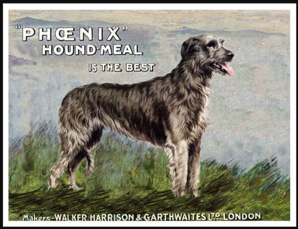 IRISH WOLFHOUND ON LOVELY VINTAGE STYLE DOG FOOD ADVERT ART PRINT POSTER