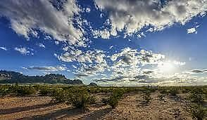 BIG BEAUTIFUL 1/2 ACRE LOT Luna County, NM!! SELLER FINANCE, Bid is Downpayment,