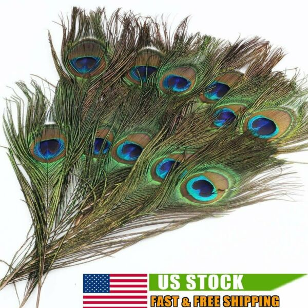 50 PACK Peacock Tail Feathers Natural For Bouquet DIY Decoration 10 12 inch US $16.98