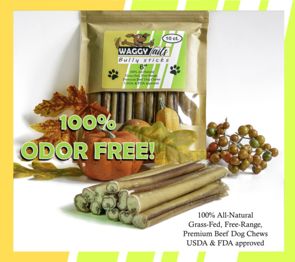 Waggy Tails Bully Sticks 100% Odor Free All Natural 6quot; Dog Treats 10 Pack $15.99