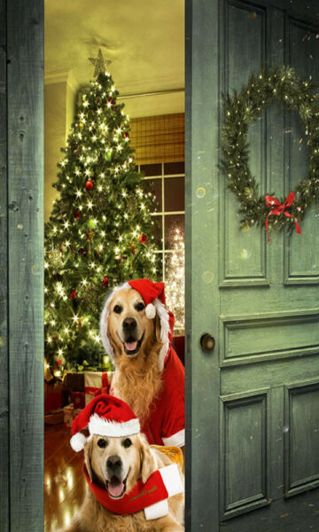 LED Light Up Christmas Dogs Lighted Canvas Picture Art Home Office Decor $8.50