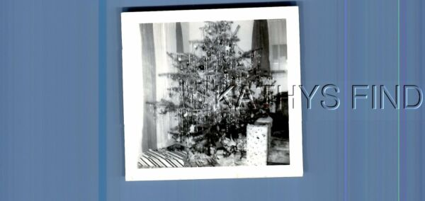 FOUND Bamp;W PHOTO N5995 VIEW OF PRESENTS UNDER SMALL CHRISTMAS TREE $3.98