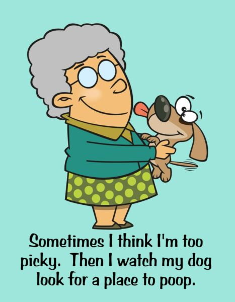 METAL FRIDGE MAGNET Think Too Picky Watch Dog Look For Place Poop Friend Funny $5.36