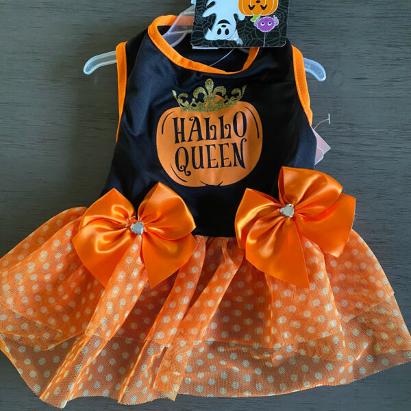 SIMPLY WAG Black Orange quot;HALLO QUEENquot; HALLOWEEN Dress Puppy Dog SMALL $16.50
