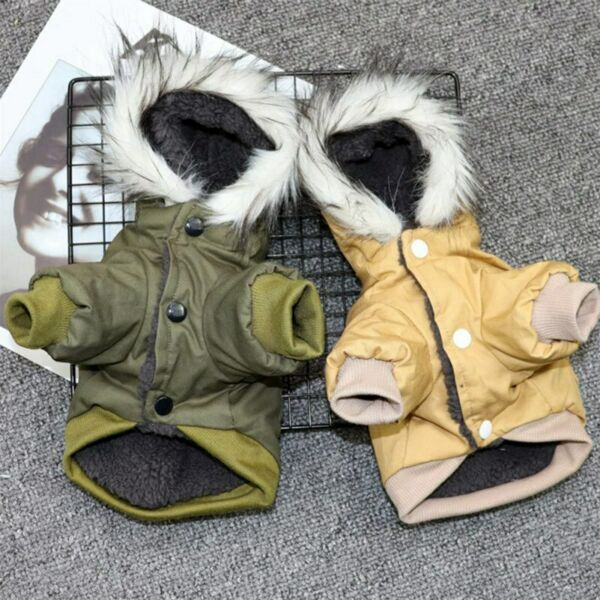 Cats winter jacket Dogs winter warm Down jacket pet winter clothes Dog Clothing $24.99