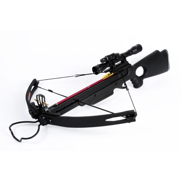 150 lb lbs Black Compound Hunting Crossbow Archery Bow 2 Arrows 180 175 80 50