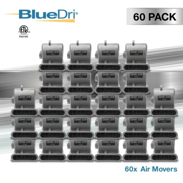 60 Pack BlueDri® ONE-29 Air Mover Carpet Dryer Blower Fan High CFM Low Amp GREY