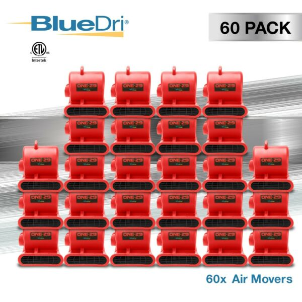 60 Pack BlueDri® ONE-29 Air Mover Carpet Dryer Blower Fan High CFM Low Amp RED