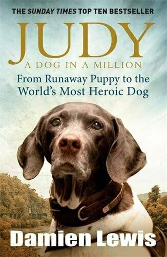 Judy: A Dog in a Million: From Runaway Puppy to the World#x27;s ... by Lewis Damien $6.37