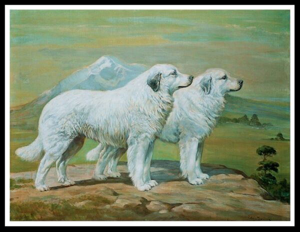 GREAT PYRENEES PYRENEAN MOUNTAIN DOGS LOVELY VINTAGE STYLE DOG ART PRINT POSTER