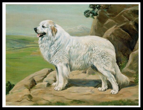 GREAT PYRENEES PYRENEAN MOUNTAIN DOG LOVELY VINTAGE STYLE DOG ART PRINT POSTER