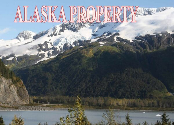 ALASKA LAND FAIRBANKS CASH! NO RESERVE REMOTE 4.78 ACRES ON GESKAKMINA LAKE RARE