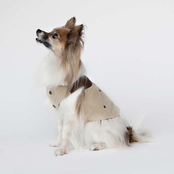 Designer Dog Reversible Coat with Faux Leather trim Sherpa Collar Size Large $24.99