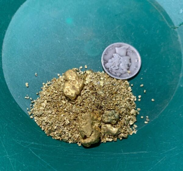 Gold Paydirt 8 lbs Unsearched Guaranteed Gold Panning Pay Dirt Gold Nuggets Bag $42.99