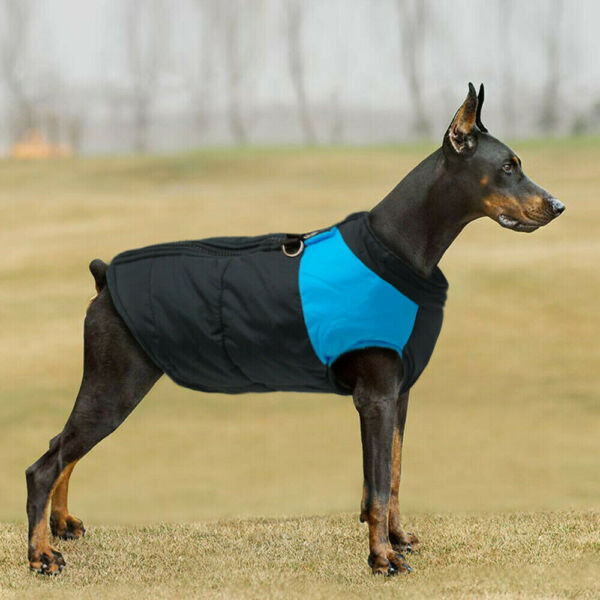 Winter Dog Clothes Small Large Dogs Waterproof Pet Padded Coats Zip Vest Jacket